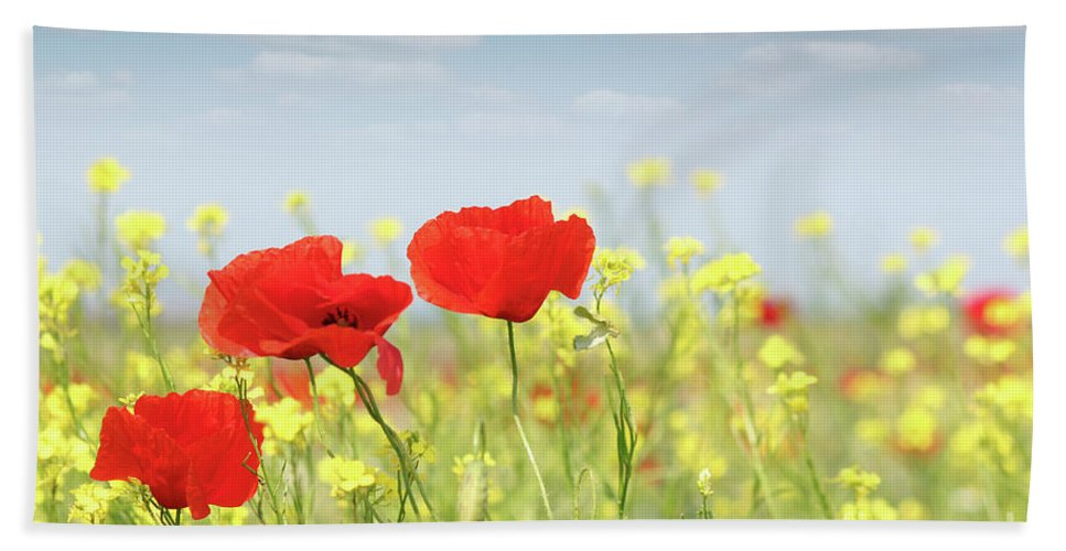Poppy Hand Towel featuring the photograph Poppy Flowers Nature Spring Scene by Goce Risteski