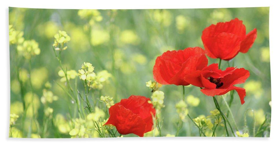 Poppy Hand Towel featuring the photograph Poppy Flowers Spring Scene by Goce Risteski