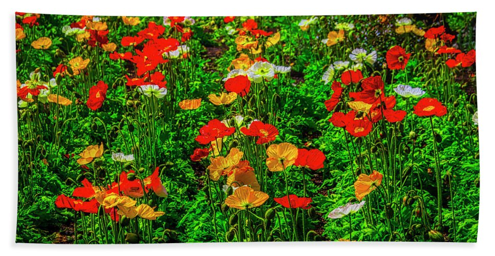 Poppy Hand Towel featuring the photograph Poppy Garden by Garry Gay