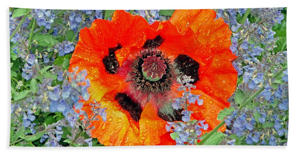 Poppy Bath Sheet featuring the photograph Poppy In Blue by Robert Meyers-Lussier