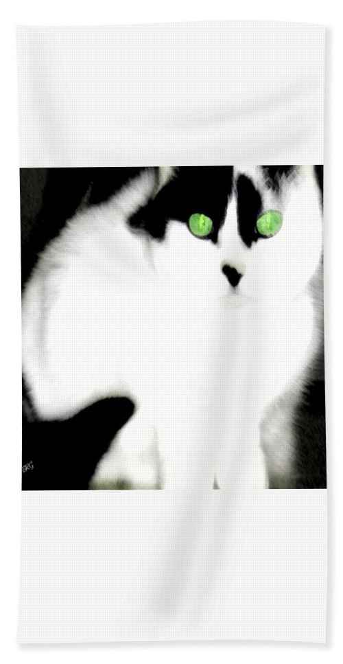 Cat Hand Towel featuring the photograph Portrait Of A White Cat by Ben and Raisa Gertsberg