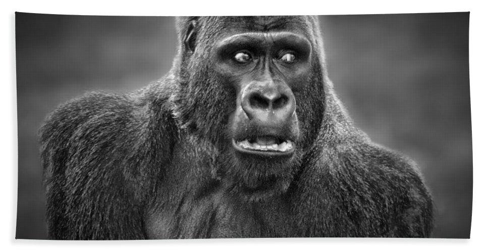 Portrait Of King Kongs Cousin Hand Towel featuring the photograph Portrait Of King Kongs Cousin IIi by Jim Fitzpatrick