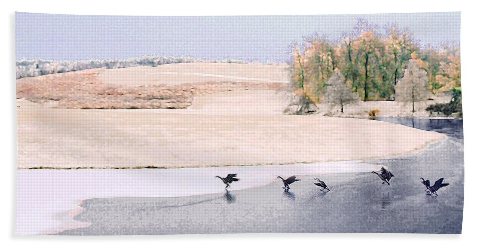 Landscape Bath Towel featuring the photograph Powell Gardens in Winter by Steve Karol