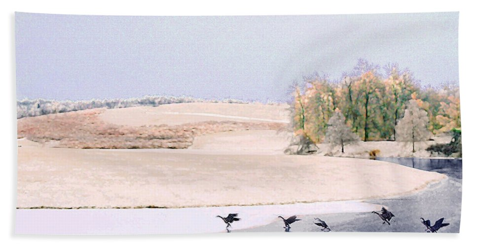 Landscape Hand Towel featuring the photograph Powell Gardens in Winter by Steve Karol