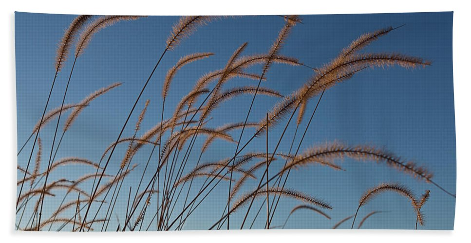 Native Hand Towel featuring the photograph Prairie Grass Landscape by Steve Gadomski