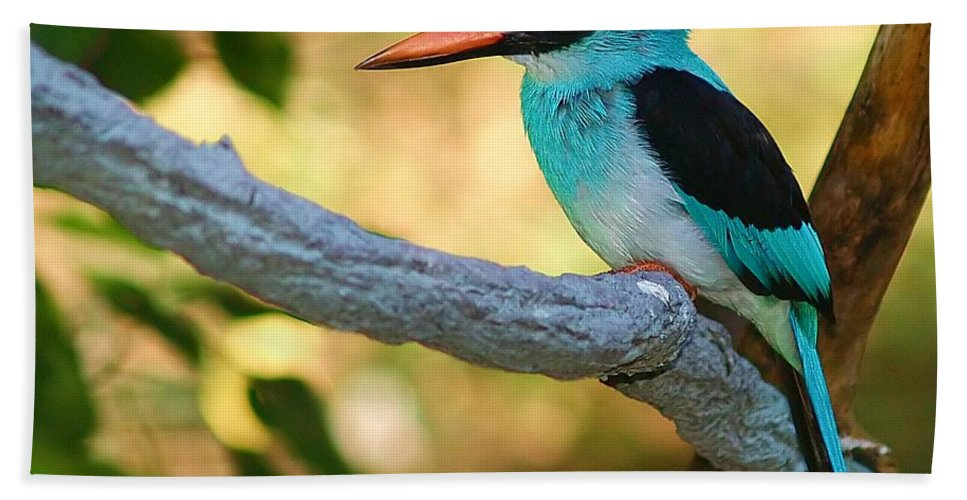 Kingfisher Bath Sheet featuring the photograph Pretty Bird by Gaby Swanson