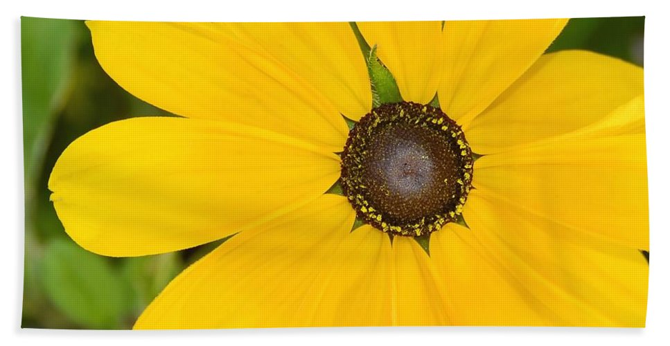 Yellow Flower Hand Towel featuring the photograph Pretty In Yellow by David Lee Thompson