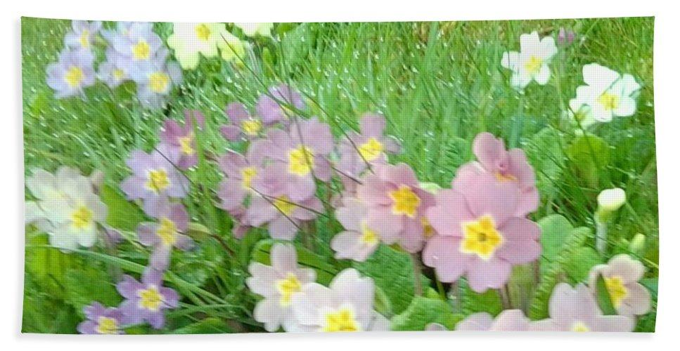 Primulas Bath Sheet featuring the photograph Pretty Primulas 1008 by Julia Woodman