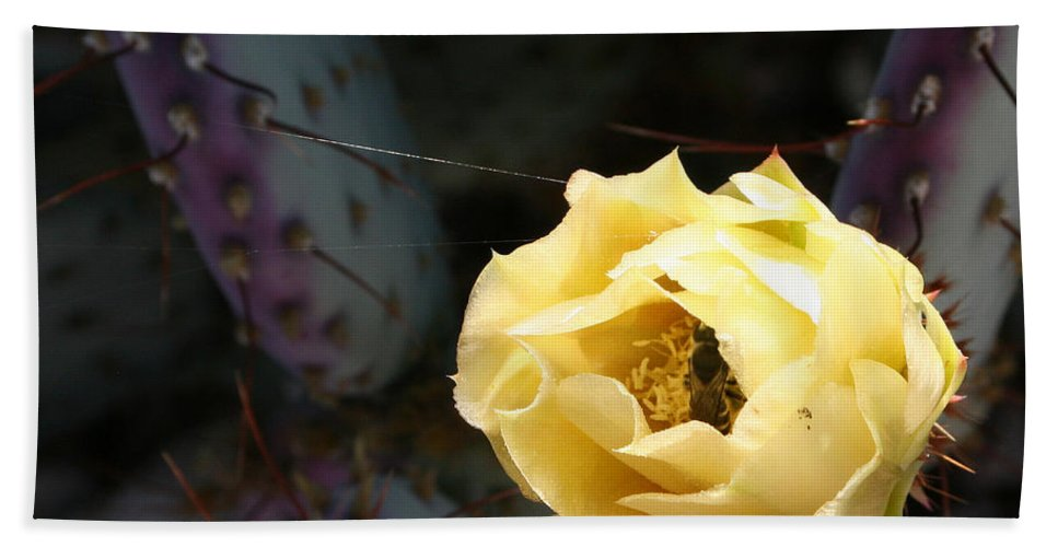 Prickly Hand Towel featuring the photograph Prickly Bee by Marna Edwards Flavell