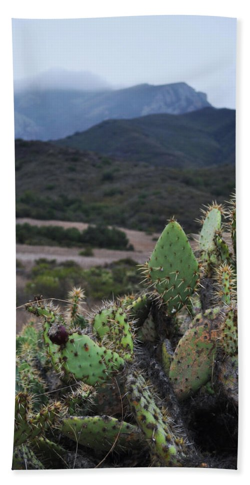 Santa Monica Mountains Hand Towel featuring the photograph Prickly Pear Cacti Rancho Sierra Vista Satwiwa Mountains by Kyle Hanson