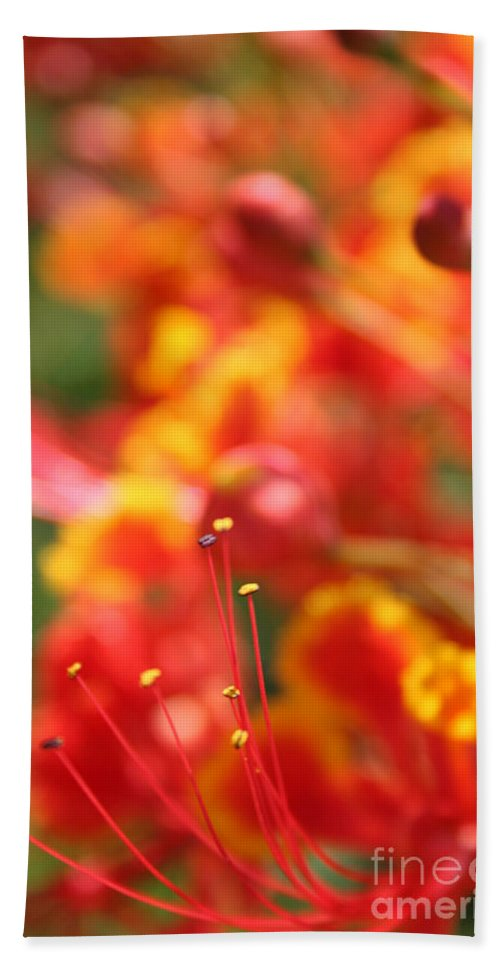 Aloha Hand Towel featuring the photograph Pride Of Barbados by Sharon Mau