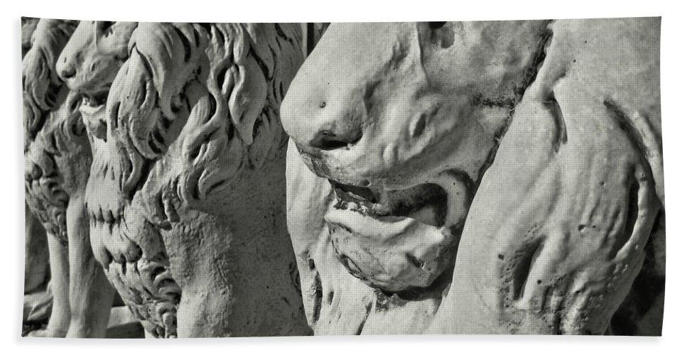 Lion Bath Sheet featuring the photograph Pride Of Lions by JAMART Photography