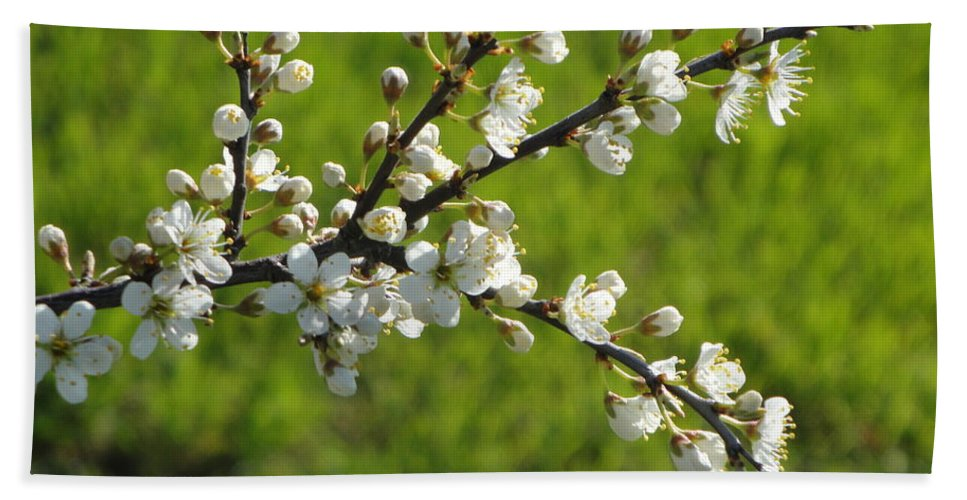 Flora Hand Towel featuring the photograph Pride Of The Hedgerow by Susan Baker