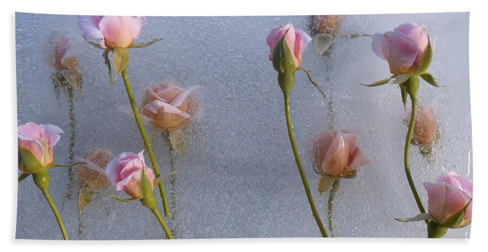 Pink Roses Hand Towel featuring the photograph Promise Of New Life by Alison Lee Cousland
