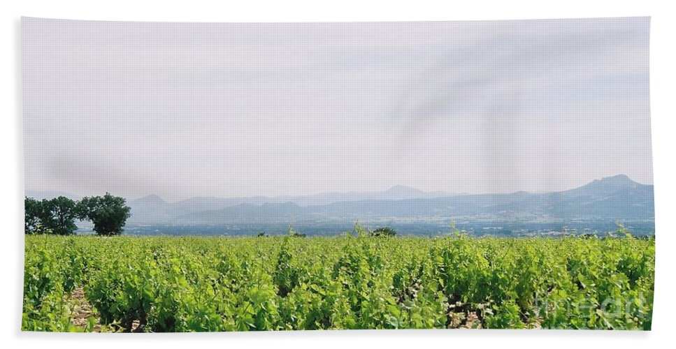 France Bath Sheet featuring the photograph Provence Spring Vineyard by Nadine Rippelmeyer