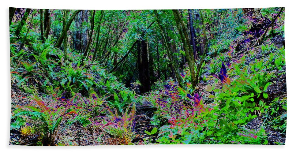 Ferns Bath Sheet featuring the photograph Psychedelic Fern Gully On Mt Tamalpais by Ben Upham III