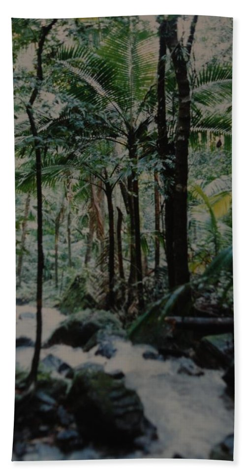 Trees Bath Sheet featuring the photograph Puerto Rico by Rob Hans