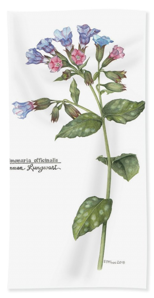 Flora Hand Towel featuring the painting Pulmonaria Officinalis by Rowena Finn