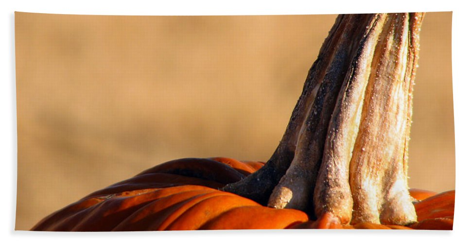 Pumpkins Hand Towel featuring the photograph Pumpkin by Amanda Barcon