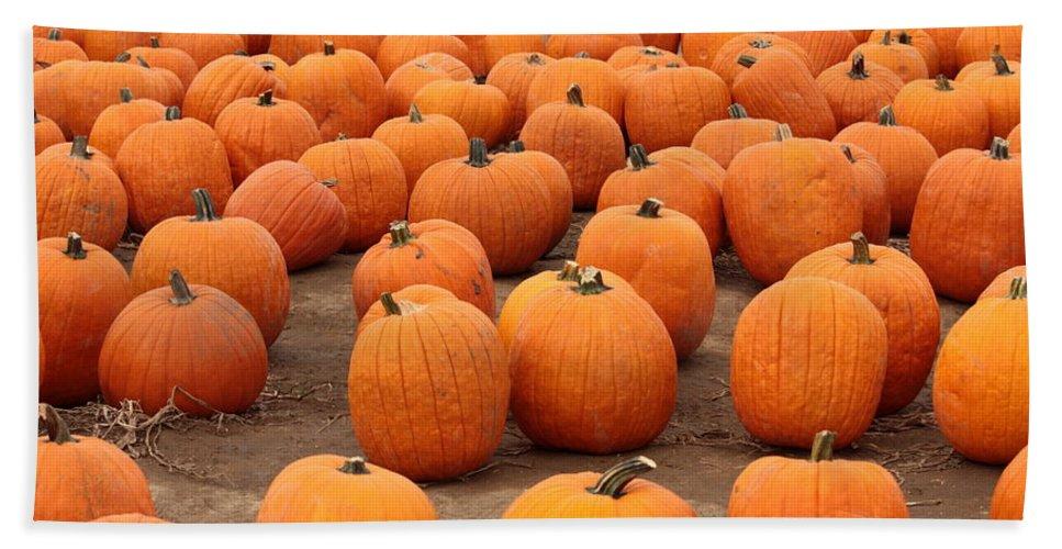 Pumpkins Hand Towel featuring the photograph Pumpkins Waiting For Homes by Carol Groenen