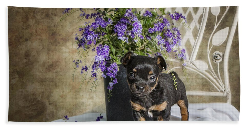 Puppy Hand Towel featuring the photograph Puppy Dog With Flowers by Ronel Broderick