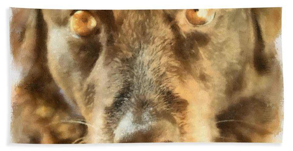 Dog Hand Towel featuring the photograph Puppy Eyes by Paulette B Wright