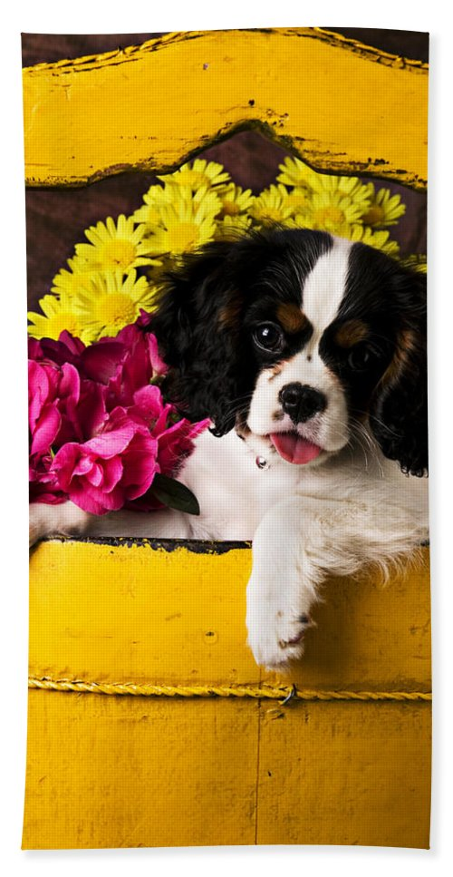 Puppy Dog Cute Doggy Domestic Pup Pet Pedigree Canine Creature Soccer Ball Hand Towel featuring the photograph Puppy In Yellow Bucket by Garry Gay