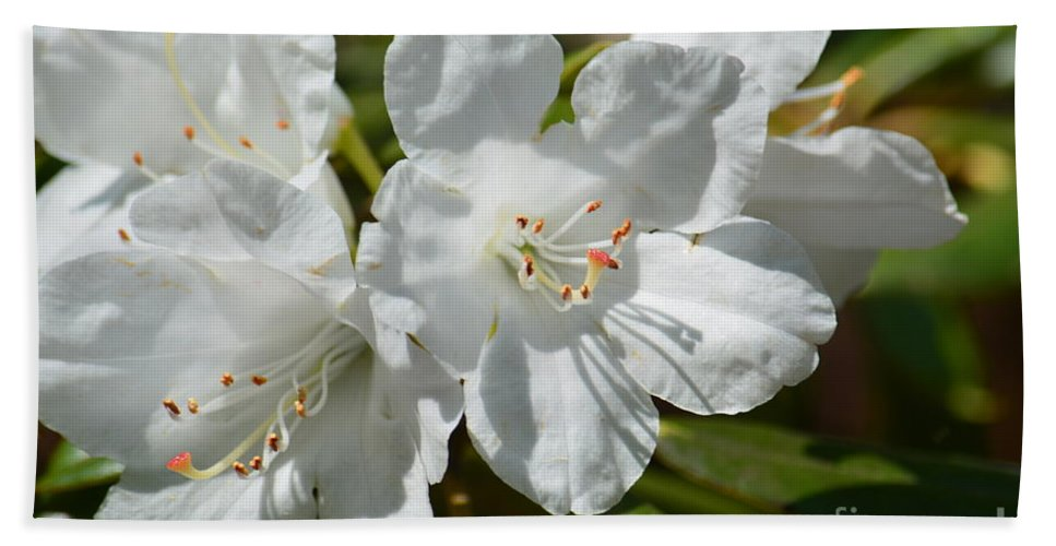 Purest White Hand Towel featuring the photograph Purest White by Maria Urso