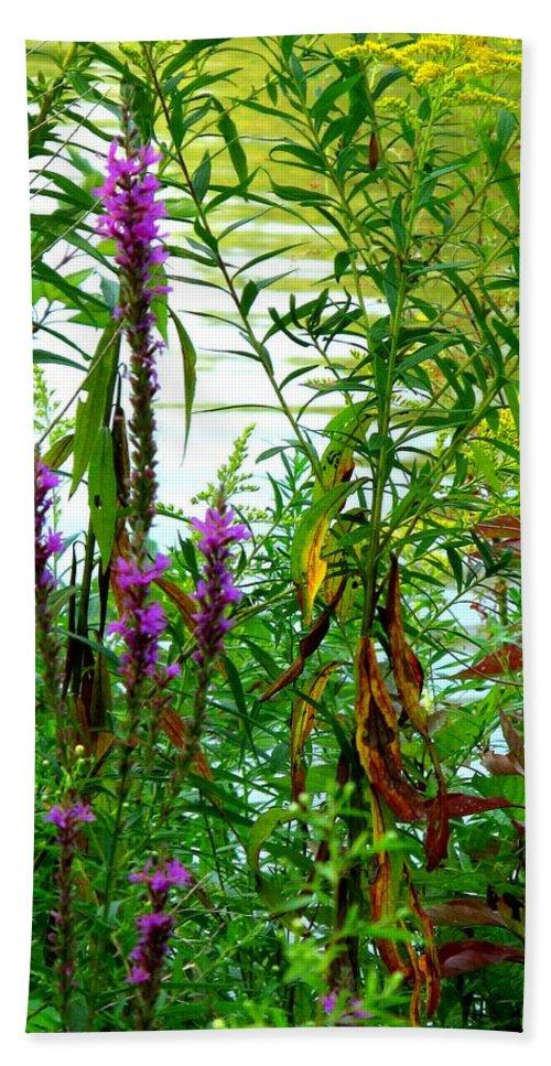 Purple Bath Towel featuring the photograph Purple And Yellow by Ian MacDonald