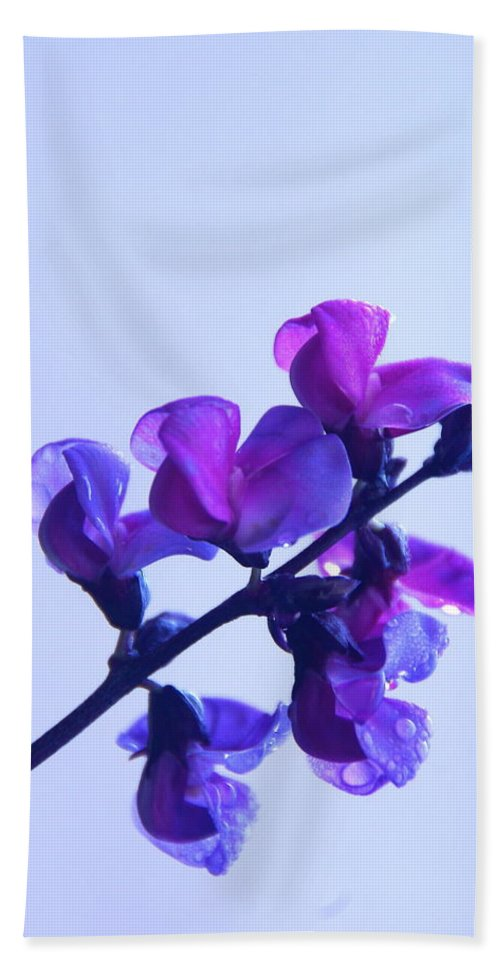 Floral Hand Towel featuring the photograph Purple by Byron Varvarigos