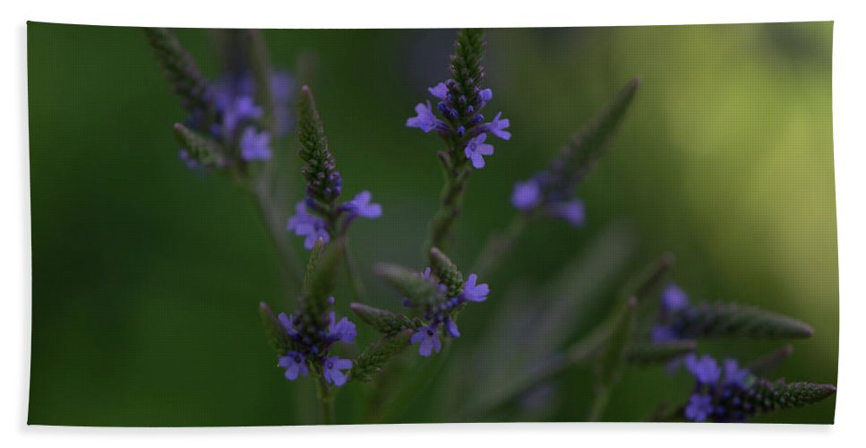 Floral Hand Towel featuring the photograph Purple Cones by Linda DeBoard