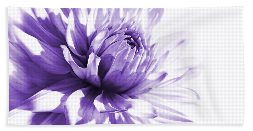 Dahlia Hand Towel featuring the photograph Purple Dahlia Floral by Jennie Marie Schell