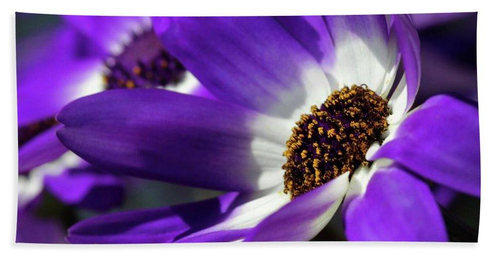 Flower Bath Sheet featuring the photograph Purple Daisy by Sabrina L Ryan