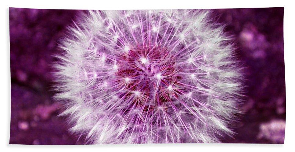 Dandelion Bath Sheet featuring the photograph Purple Dandy by P Donovan