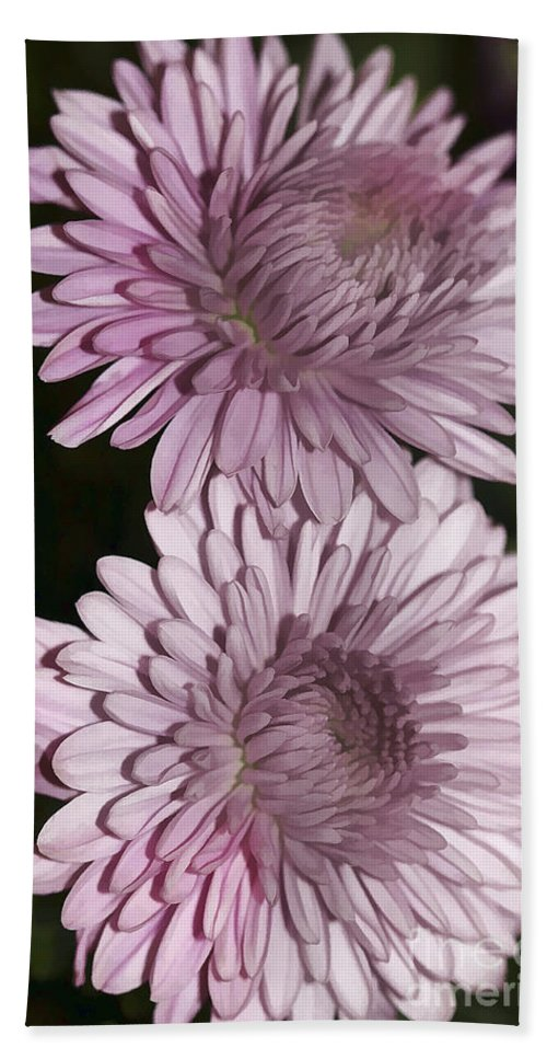 Flowers Hand Towel featuring the photograph Purple Duo by Deborah Benoit