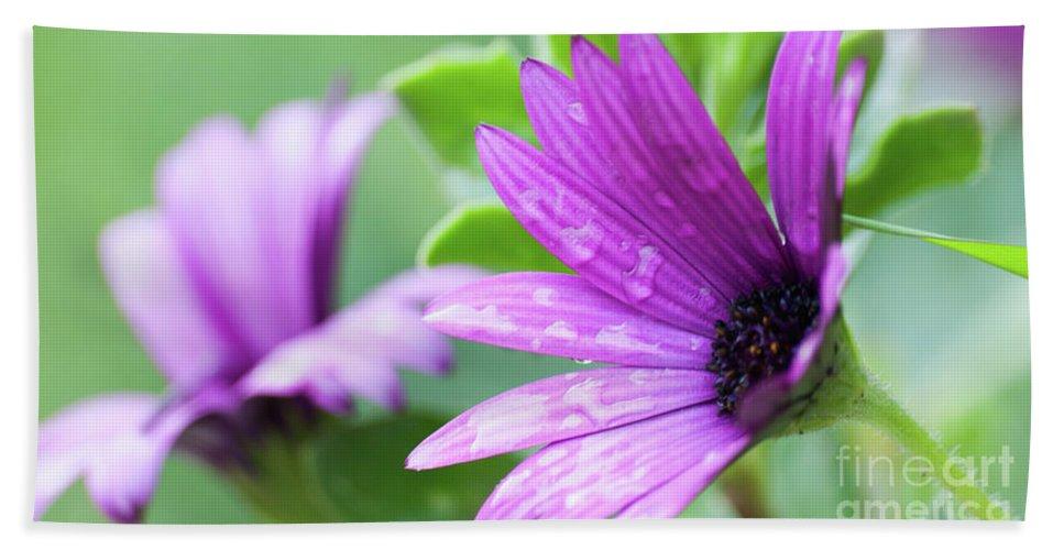 Purple Flower Bath Sheet featuring the photograph Purple Flower Closeup by Ersoy Basciftci