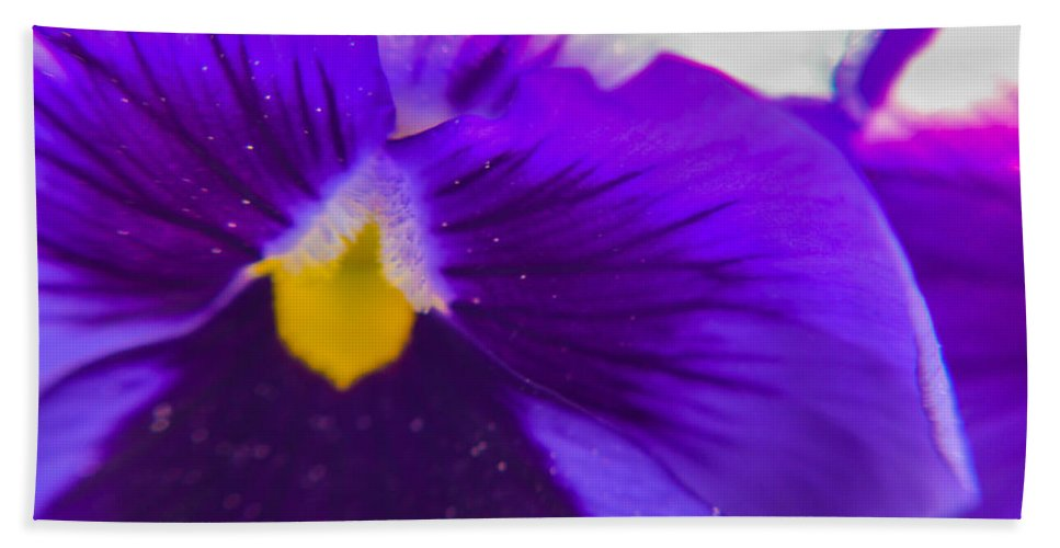 Purple Bath Sheet featuring the photograph Purple Flower by Miranda Strapason