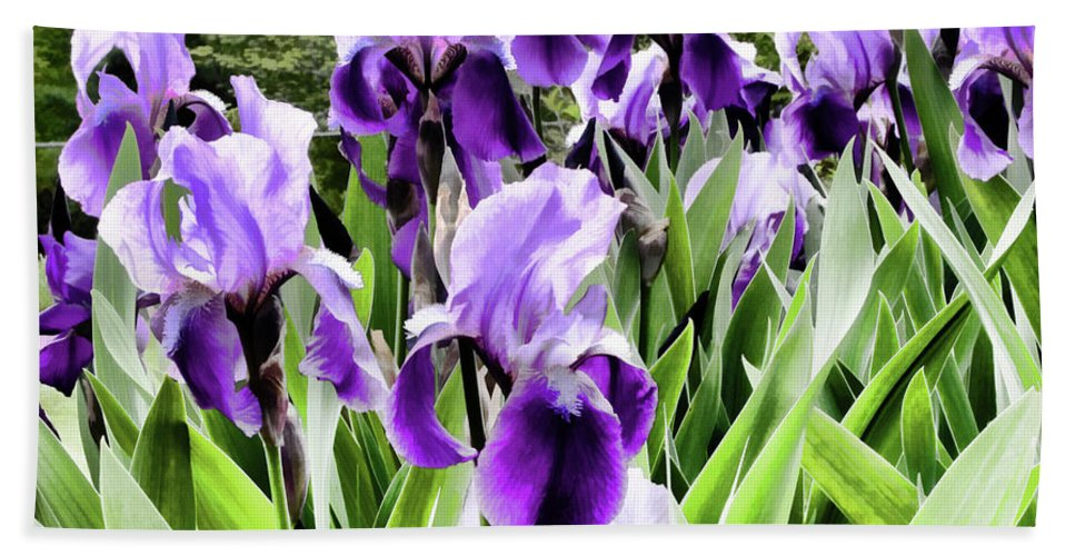 Flora Hand Towel featuring the photograph Purple Iris by Laura Mace Rand
