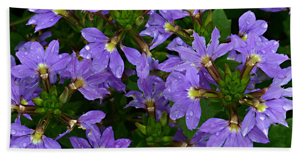 Purple Flower Plant Green Photograph Photography Bath Sheet featuring the photograph Purple Perspective by Shari Jardina