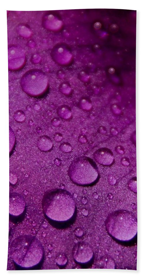 Nature Hand Towel featuring the photograph Purple Rain by Chris Berry