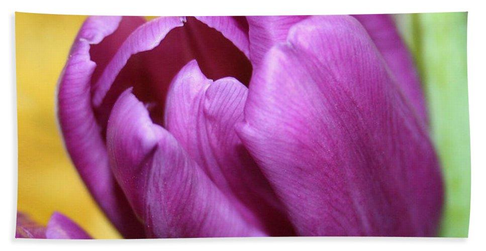 Flowers Nature Bath Sheet featuring the photograph Purple Spring by Linda Sannuti