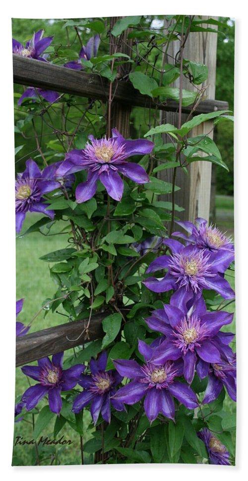 Purple Bath Sheet featuring the photograph Purple by Tina Meador