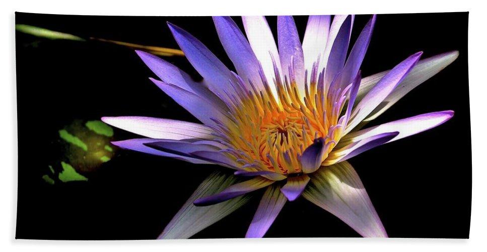 Purple Zen Bath Sheet featuring the photograph Purple Zen by Lisa Renee Ludlum