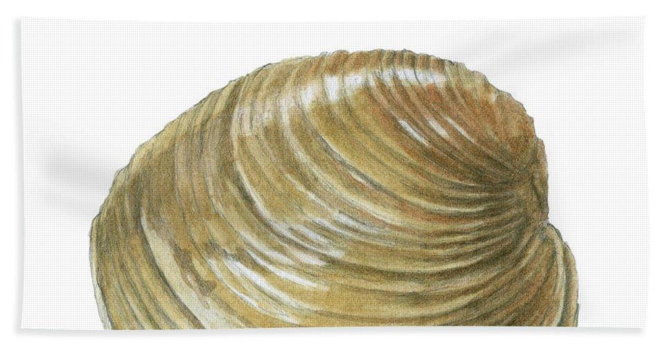Quahog Bath Sheet featuring the painting Quahog Shell by Dominic White