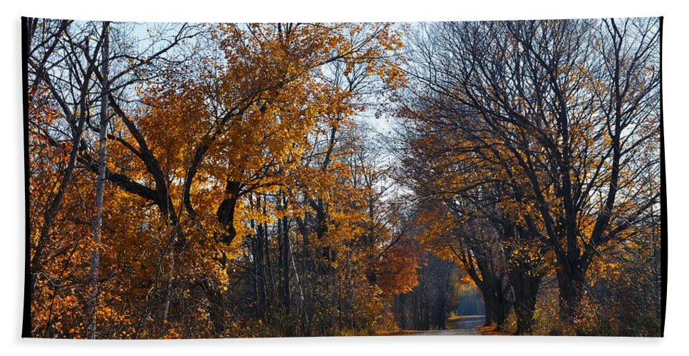 Road Hand Towel featuring the photograph Quarterline Road by Tim Nyberg
