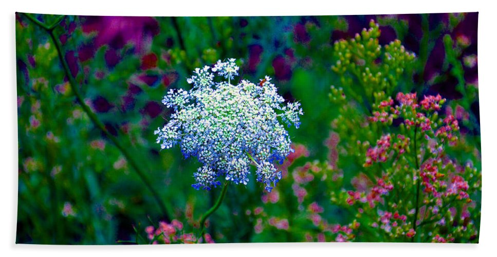 Queen Annes Lace Bath Sheet featuring the photograph Queen Anne by Brittany Horton