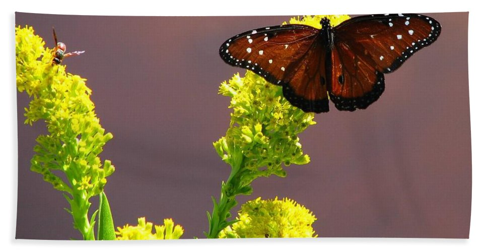 Fritillary Hand Towel featuring the photograph Queen Fritillary by J M Farris Photography