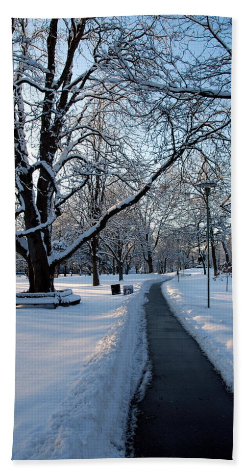Snow Bath Sheet featuring the photograph Queen's Park Pathway by Rick Shea