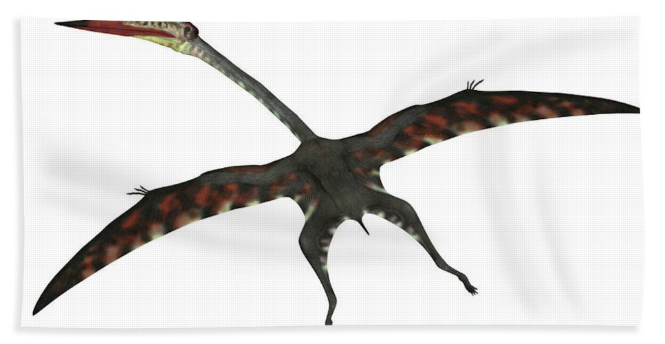 Quetzalcoatlus Hand Towel featuring the digital art Quetzalcoatlus Flying Reptile by Corey Ford