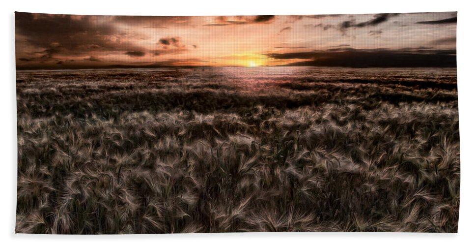 Summer Bath Towel featuring the photograph Quiet Estivation by Joachim G Pinkawa
